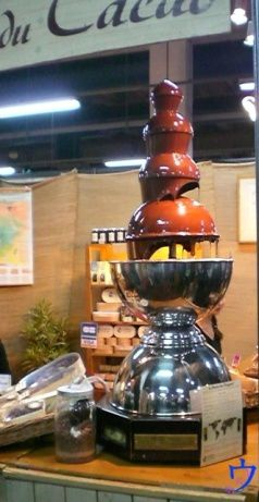 http://a21.idata.over-blog.com/0/54/59/14/Salon_du_chocolat_2009-Lyon/16-Fontaine_de_chocolat.jpg