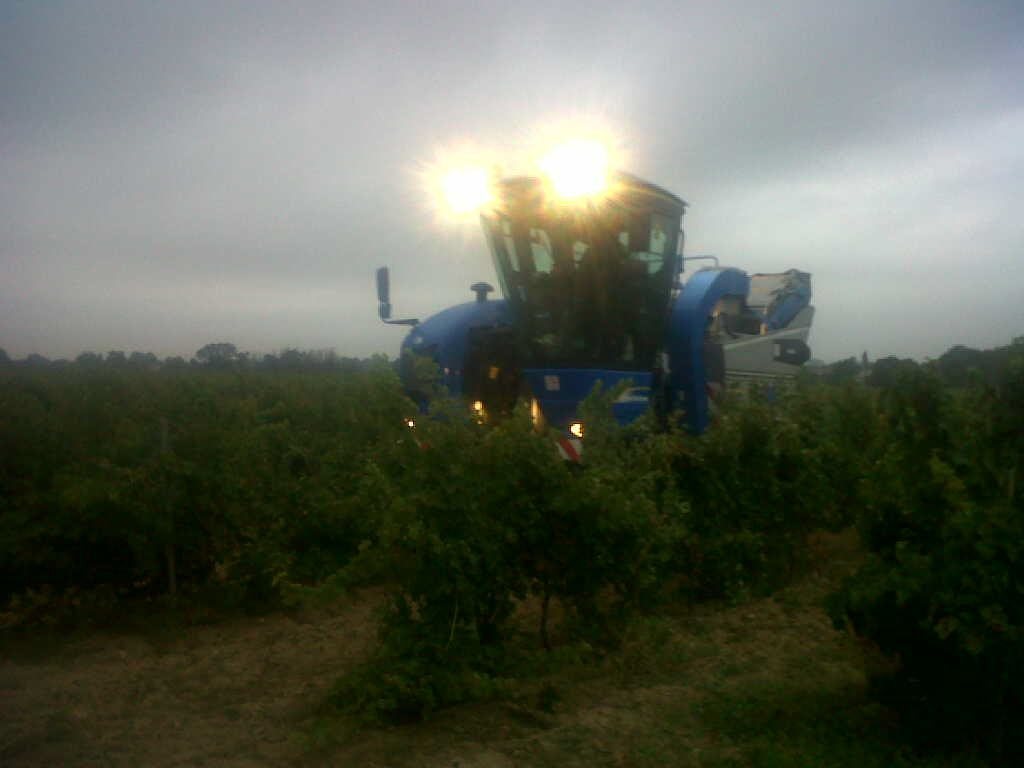 http://a21.idata.over-blog.com/2/25/15/90/Pech/Vendanges-2011.jpg